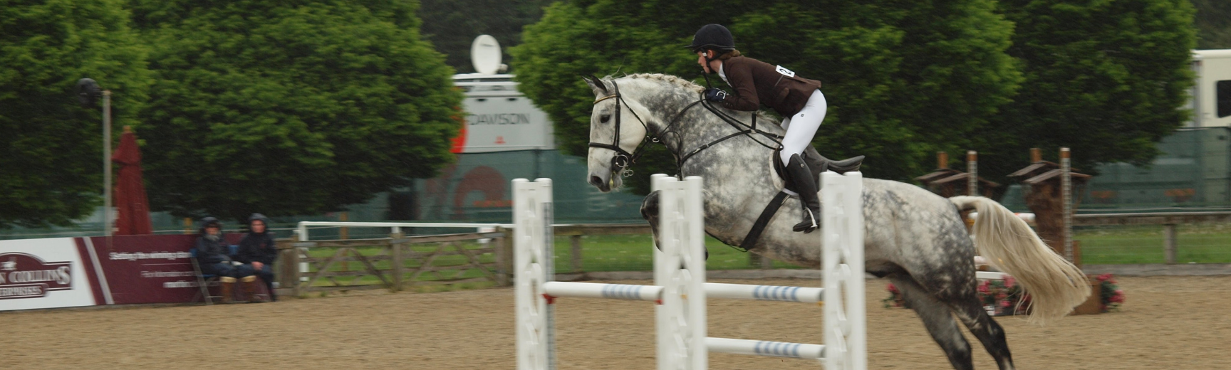 equestrian banner