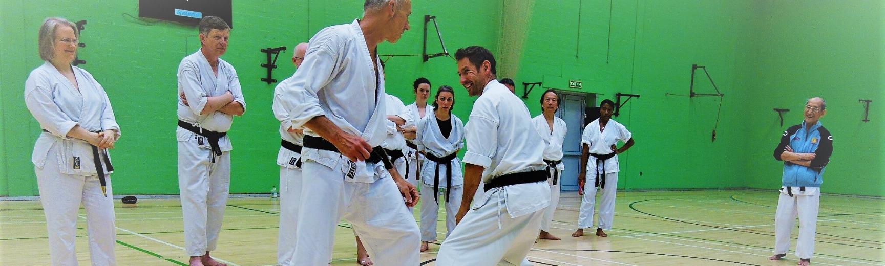 Karate Do Shotokai session taking place